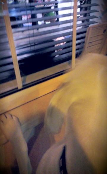 Loki peering through the vet's window
