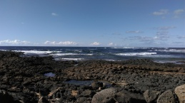 Protected from the power of the sea by cooled lava and lagoons.