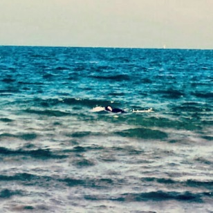 That's me, swimming in the sea!