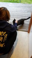 We had a regular visitor to the eco-pod. Gabs named him Simon.