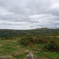 The eastern moor.