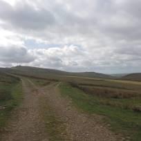 Dartmoor pathways